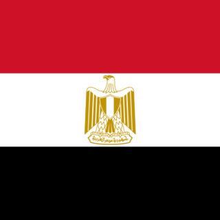https://nutricare.in/wp-content/uploads/2020/12/egypt-flag-medium-320x320.jpg