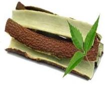 neem bark