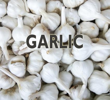 https://nutricare.in/wp-content/uploads/2021/08/garlic.jpg